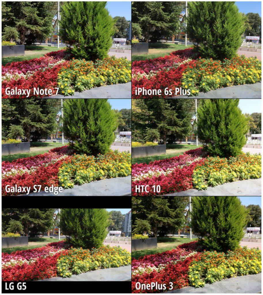 4_The Garden_1 copy