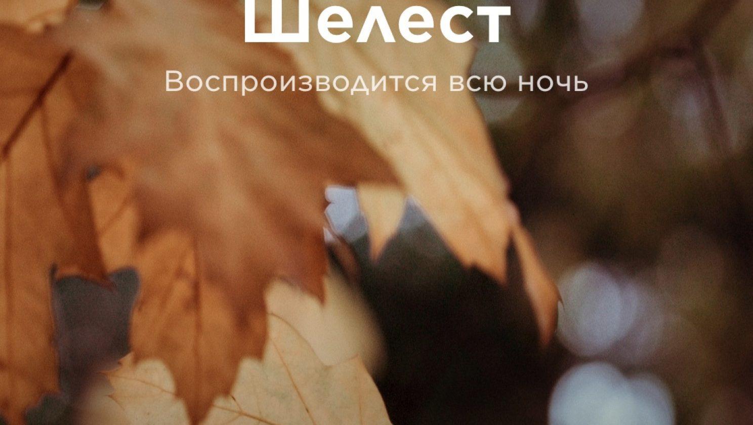 IMG_9927
