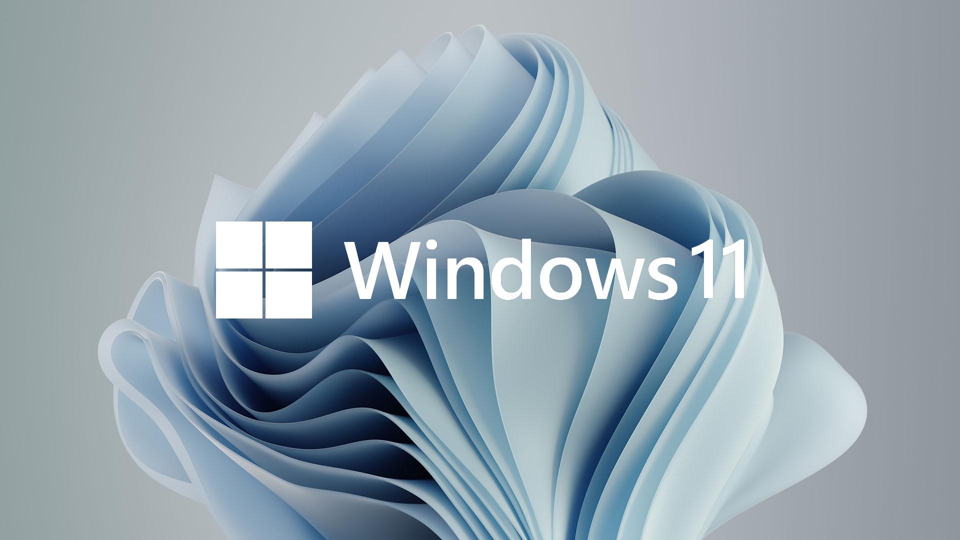 Стало известно, какие версии Windows можно бесплатно обновить доWindows 11